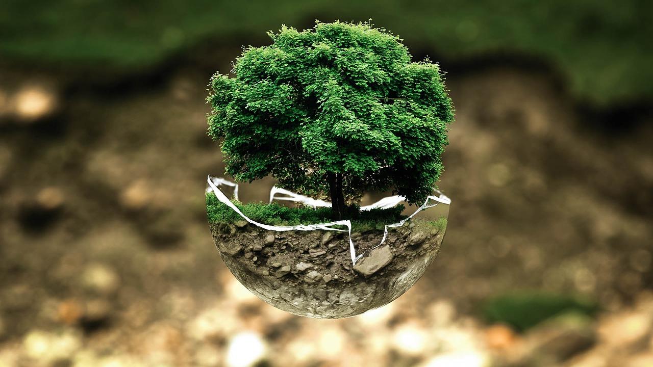 Le droit, un outil indispensable pour faire face aux changements environnementaux